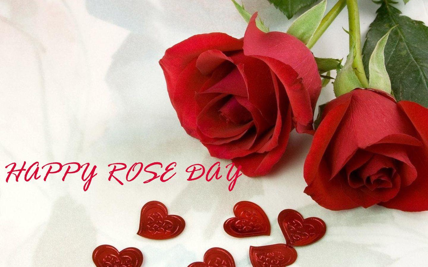 Best Rose Day Images Wallpapers Greetings 2021 2021 wishes shayari rose day wallpaper